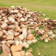 Pile of brick wall — Stock Photo #31135089