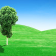 Stock Photo: Green grass hills and tree with sky