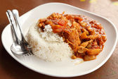 Spicy chicken curry and rice — Stock Photo