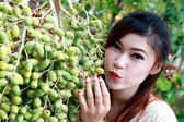 Asian women with betel palm — Stock Photo