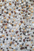 Pebbles in concrete wall texture  — Stockfoto