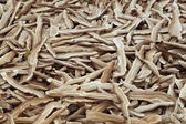 Dried lingzhi — Stockfoto