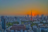 Top view of Tokyo cityscape at sunset — Stock Photo