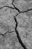 Close-up of dry dracked soil ground  — Stock Photo