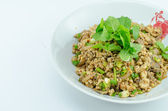 Spicy minced pork salad, minced pork mash with spicy, Thai food — Stock fotografie