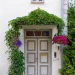 Historic House's Front Door — Stockfoto