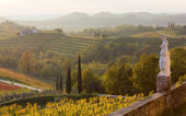 Country Landscape From Rosazzo Abbey — Stock Photo