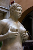 The Fountain of Tits in Treviso — Stock Photo