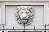 Lion Head High-Relief — Stock Photo