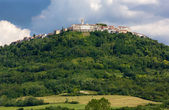Village of Motovun in Istria — Стоковое фото