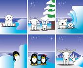 Polar bear, penguin, fox, rabbit,seal, reindeer at polar area — Stok Vektör