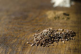 Close-up of Linseed — Stock Photo