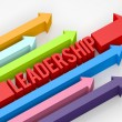 Leadership Arrow — Stock Photo