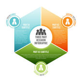 Three Part Hexagon Infographic — Stock Vector