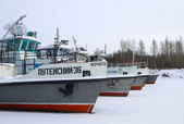 River transport moored for the winter — Foto de Stock