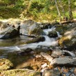 Stock Photo: River in mountain forest