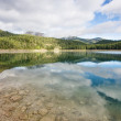 Lake the forest in mountain — Stock Photo #13732753