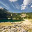 Mountain lake in forest — Stock Photo #13918092