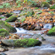 Landscape with mountain stream in autumn — Stock Photo