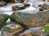 Autumn stream rocks — Stock Photo