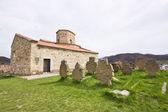 Servische klooster met de oude begraafplaats — Stockfoto