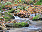 Stream in Mountain — Stock Photo