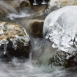 Scene with winter mountain stream — Stock Photo