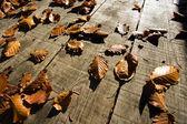 Autumn leaves on a wooden floor — Stock Photo