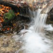Stream in autumn — Stock Photo #15604987