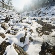 Winter landscape with stream — Stock Photo