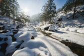 Winter landscape with stream — Stock Photo