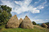 Landscape with haystacks — Stock Photo