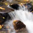 Deep forest Waterfall stream — Stock Photo #17696079