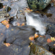 Deep forest Waterfall stream - Stock Photo