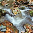 Deep forest Waterfall Autumn - Stock Photo