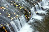 Deep forest Waterfall stream — Stock Photo