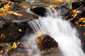 Deep forest Waterfall stream — Stock Photo
