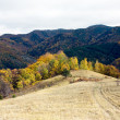 Stock Photo: Mountain landscape in autumn