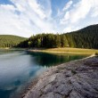 Lake the forest in mountain — Stock Photo #18527625