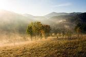 Paisaje de montaña con niebla — Foto de Stock