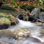 Cascade falls over mossy rocks — Stock Photo #18813545