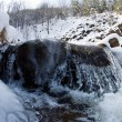 Stock Photo: Winter landscape with stream