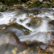 The creek in autumn — Stock Photo #19722921