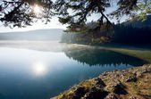 Beautiful morning on the lake — Stock Photo