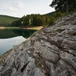 Stock Photo: Green water lake in forest