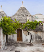 An old trulli of Alberobello not inhabited by tree vineyard outside — Stock Photo
