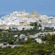 View of the old town Ostuni, Apulia (Italy) — Stock Photo #50776983