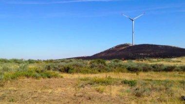 Windmill landscape — Stock Video