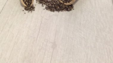 Chia seeds — Stock Video