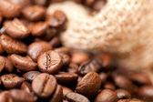 Chicchi di caffè con il saccheggio — Foto Stock